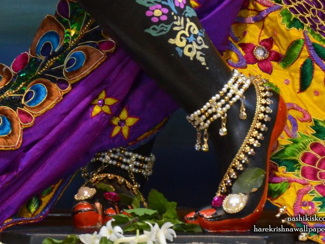 Sri Madan Gopal Feet Wallpaper (003) Size 2560×1600 Download