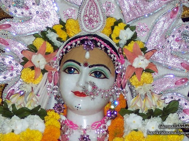 Sri Radha Close up Wallpaper (003) Size 2560×1600 Download