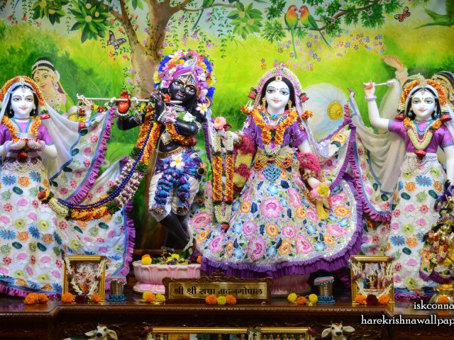 Sri Sri Radha Madan Gopal Lalita Vishakha Wallpaper (003) Size 1920×1200 Download