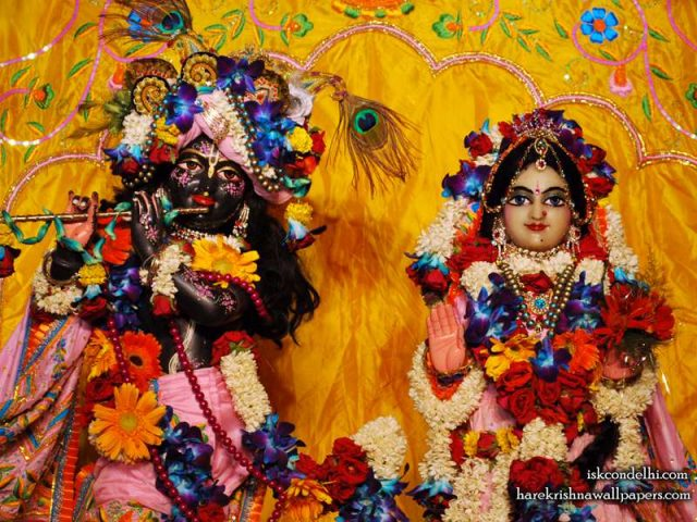 Sri Sri Radha Parthasarathi Close up Wallpaper (004)