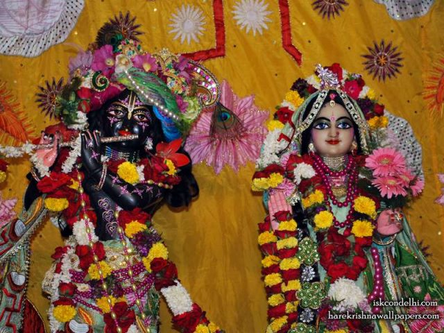 Sri Sri Radha Parthasarathi Close up Wallpaper (005)