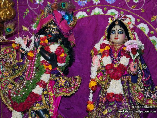 Sri Sri Radha Parthasarathi Close up Wallpaper (006)