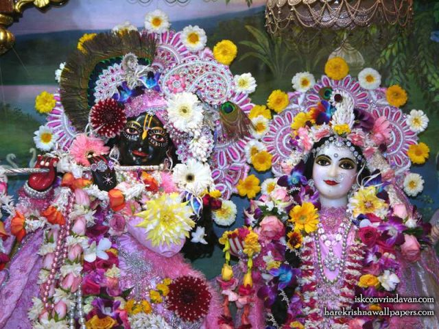 Sri Sri Radha Shyamsundar Close up Wallpaper (006)