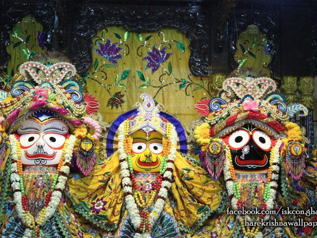 Jagannath Baladeva Subhadra Wallpaper (007) Size 2560×1600 Download