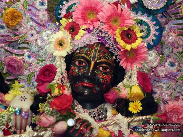 Sri Krishna Close up Wallpaper (007)