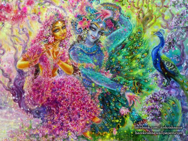 Radha Krishna Wallpaper (008)