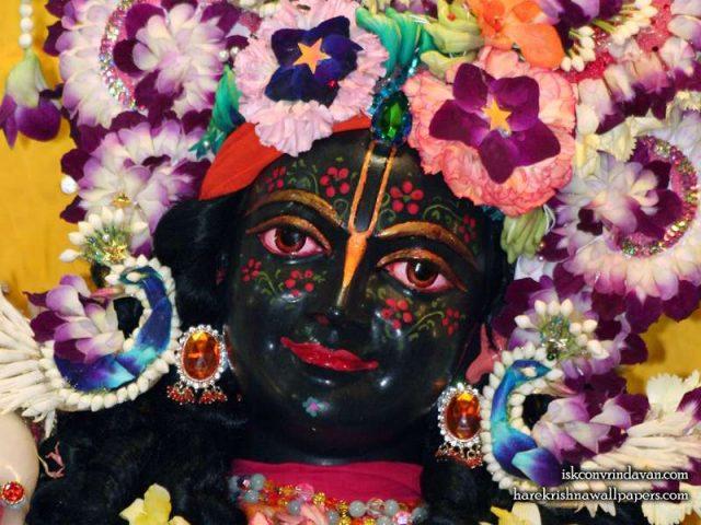 Sri Krishna Close up Wallpaper (009)