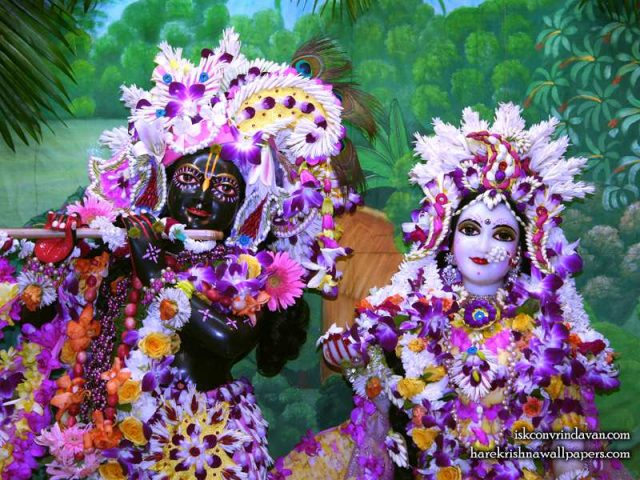 Sri Sri Radha Shyamsundar Close up Wallpaper (010)