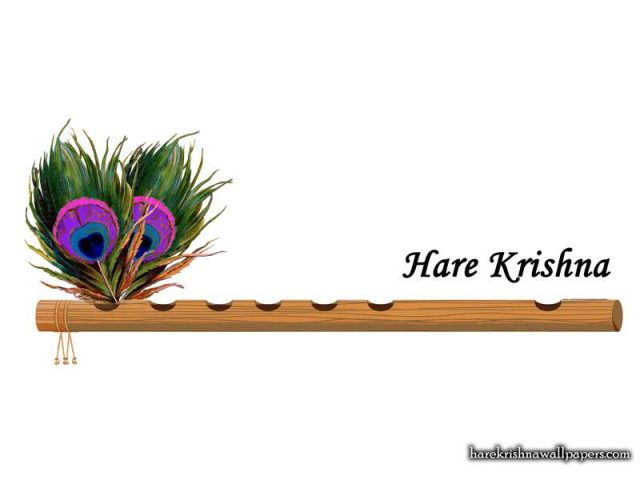 Hare Krishna Wallpaper (012)