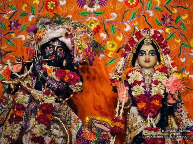 Sri Sri Radha Parthasarathi Close up Wallpaper (012)