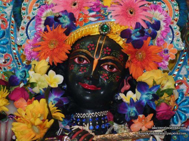 Sri Krishna Close up Wallpaper (013)