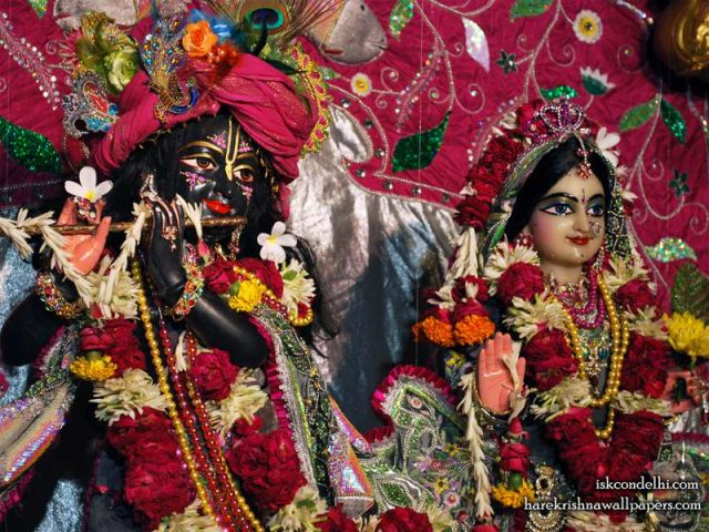 Sri Sri Radha Parthasarathi Close up Wallpaper (014)
