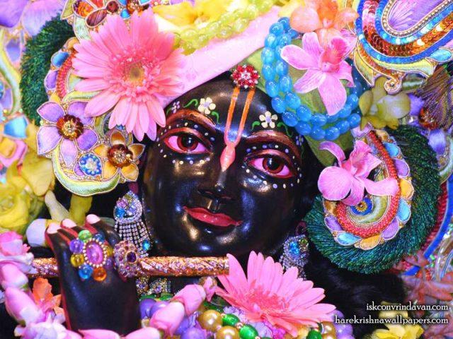 Sri Shyamsundar Close up Wallpaper (015)