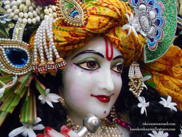 Sri Giridhari Close up Wallpaper (016)