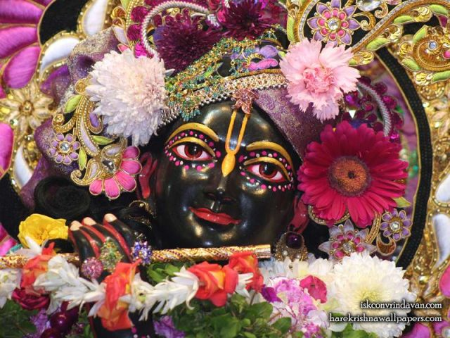 Sri Shyamsundar Close up Wallpaper (016)