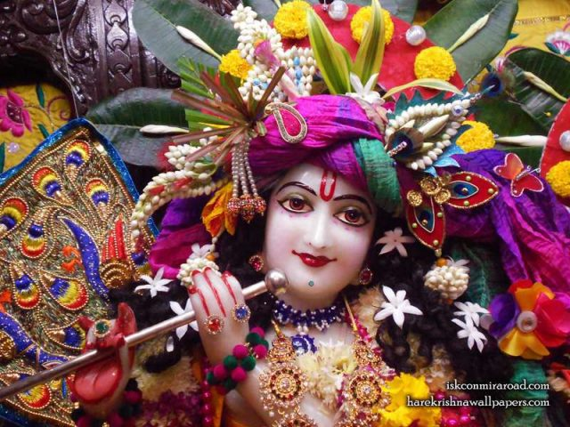 Sri Giridhari Close up Wallpaper (017)