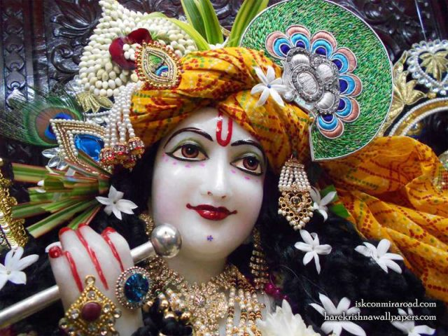 Sri Giridhari Close up Wallpaper (018)