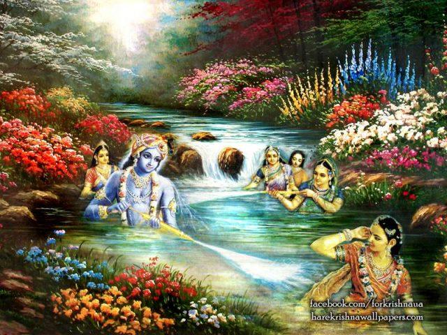 Radha Krishna Wallpaper (020)