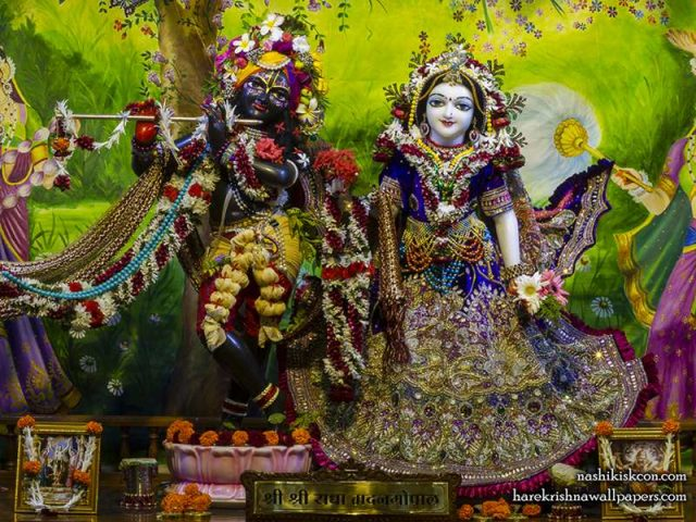 Sri Sri Radha Madan Gopal Wallpaper (022)