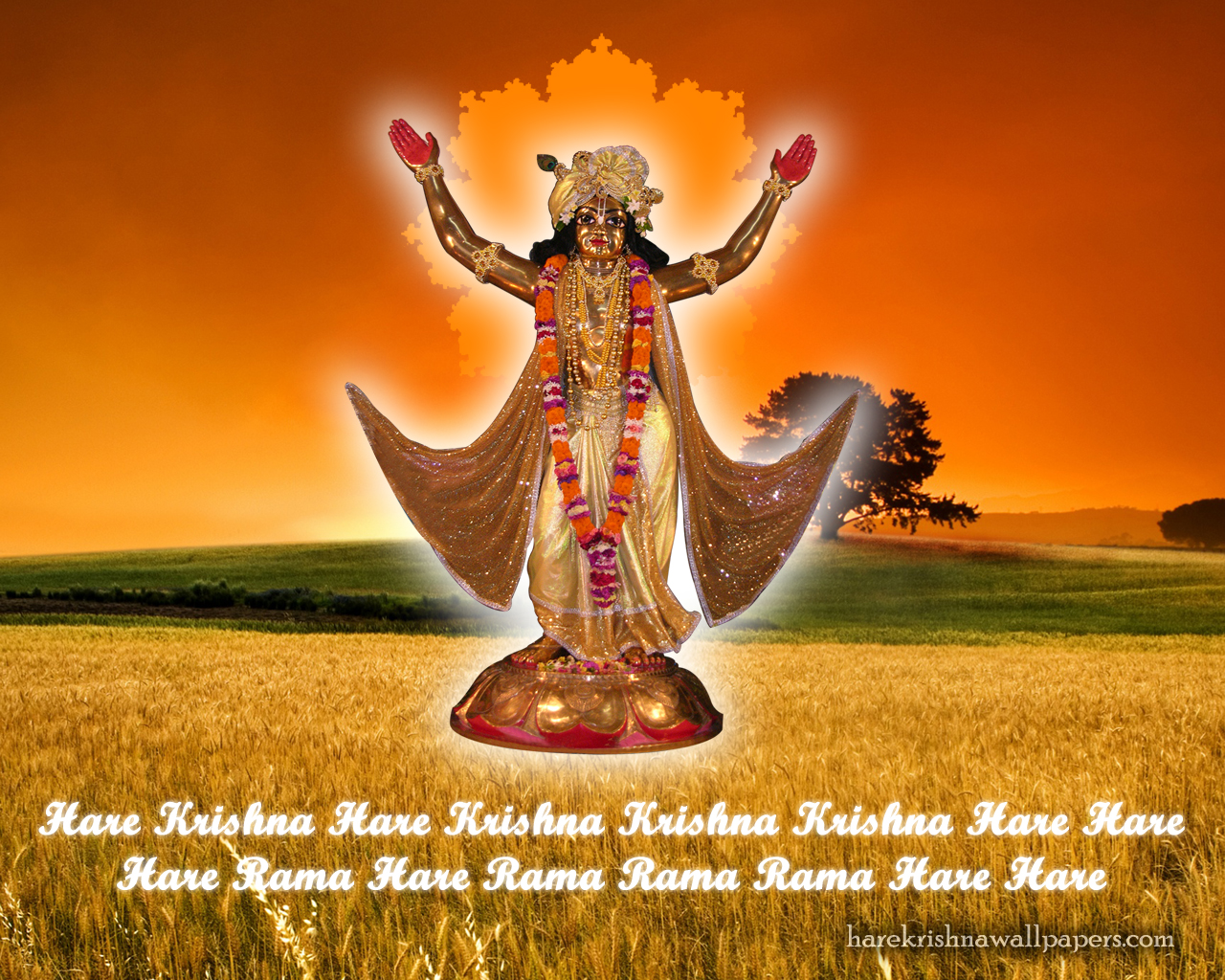 Chaitanya Mahaprabhu Wallpaper (002) Size 1280x1024 Download