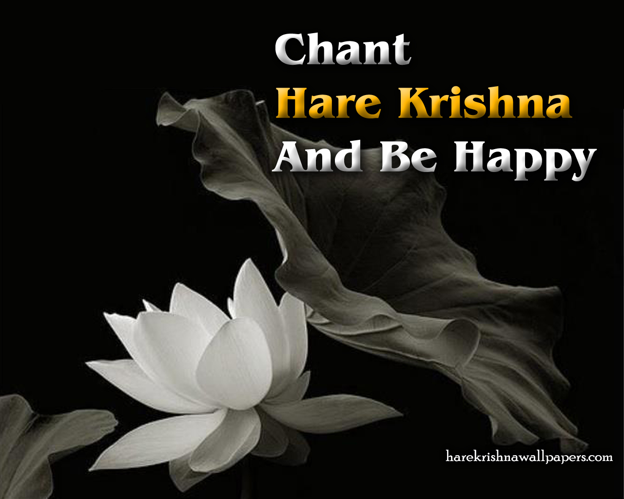 Chant Hare Krishna and be happy Wallpaper (010) Size 1280x1024 Download