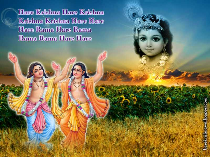 Chant Hare Krishna Mahamantra Wallpaper (018)