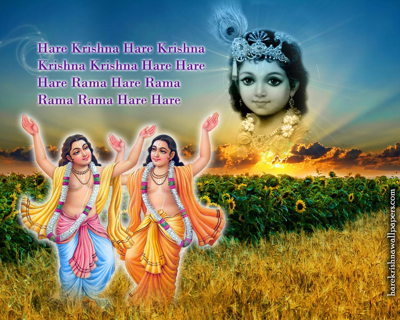 Chant Hare Krishna Mahamantra Wallpaper (018) Size 1280x1024 Download
