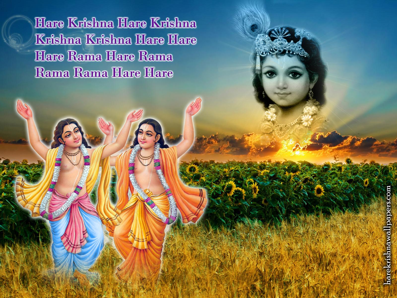 Chant Hare Krishna Mahamantra Wallpaper (018) Size1600x1200 Download