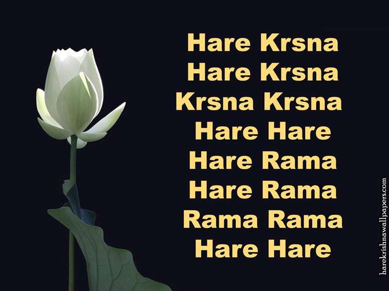 Chant Hare Krishna Mahamantra Wallpaper