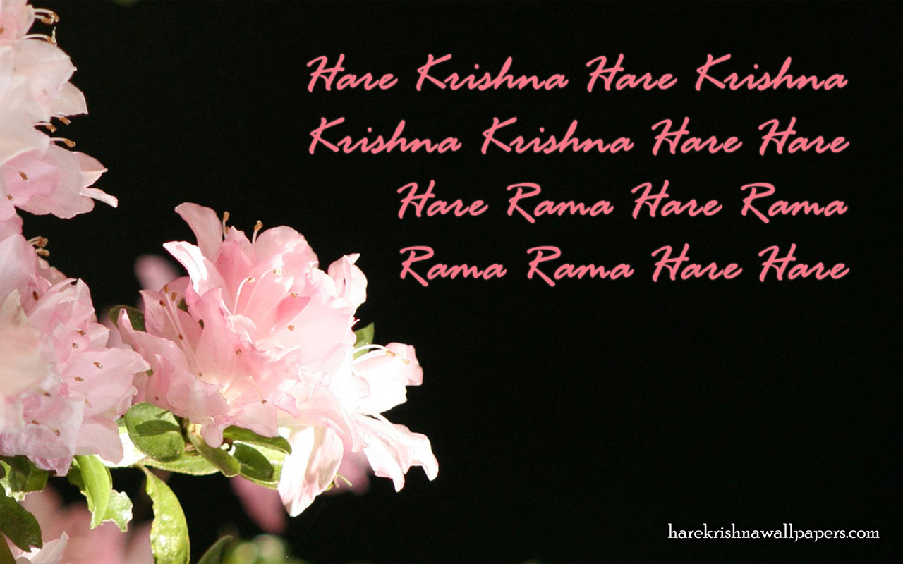 Chant Hare Krishna Mahamantra Wallpaper (012) Size 1280x800 Download