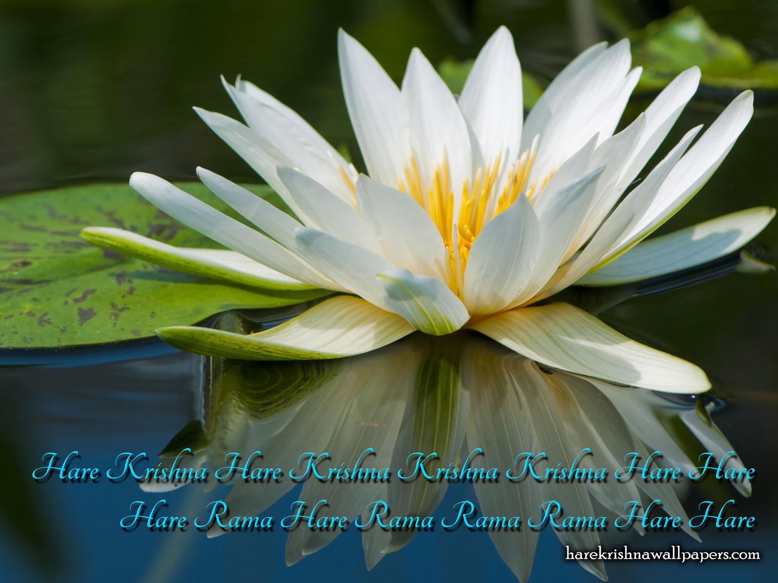 Chant Hare Krishna Mahamantra Wallpaper (014) Size1600x1200 Download