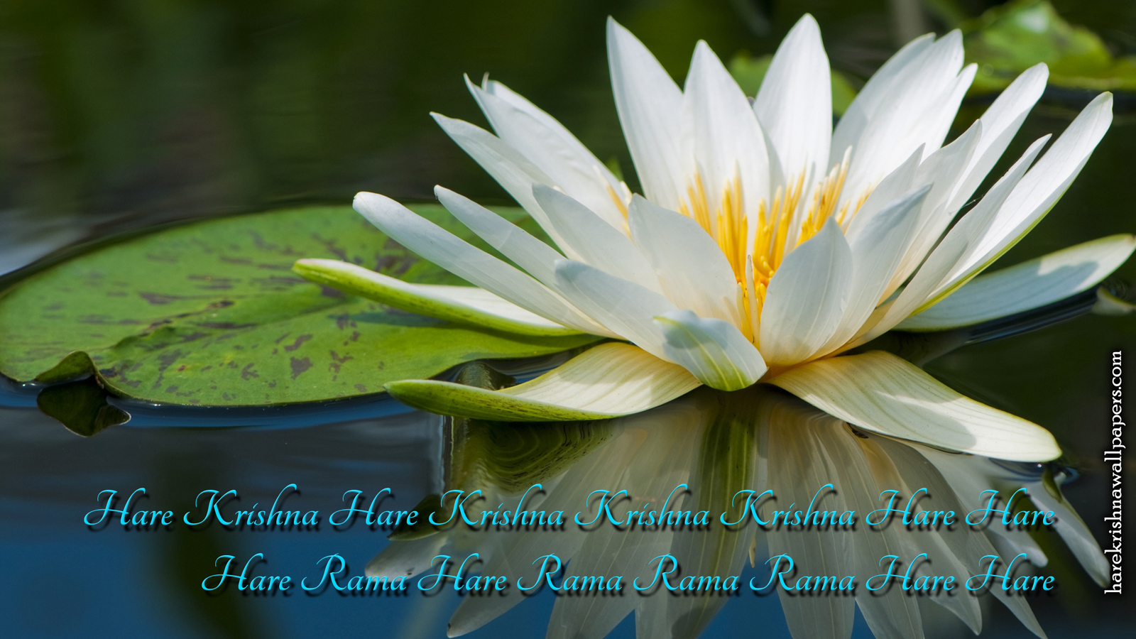 Chant Hare Krishna Mahamantra Wallpaper (014) Size 1600x900 Download