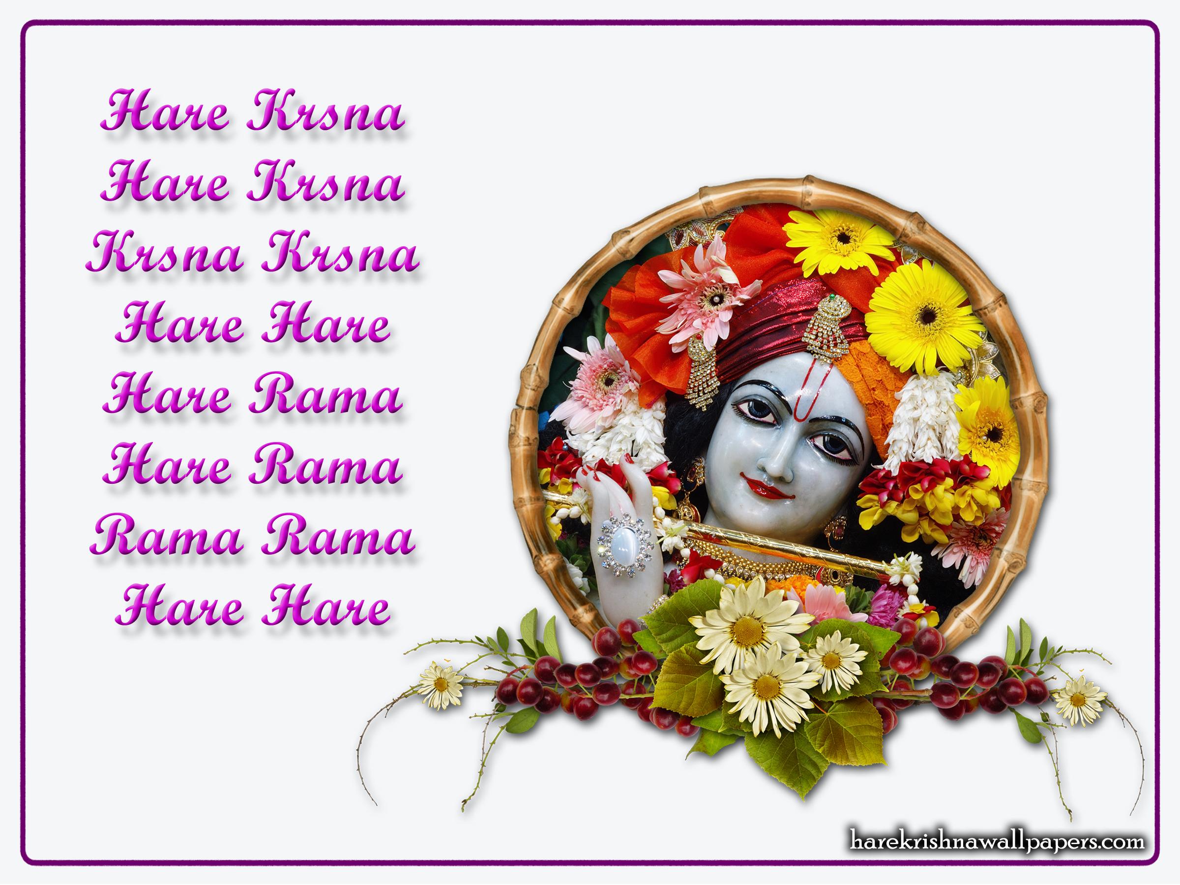 Chant Hare Krishna Mahamantra Wallpaper (015) Size 2400x1800 Download