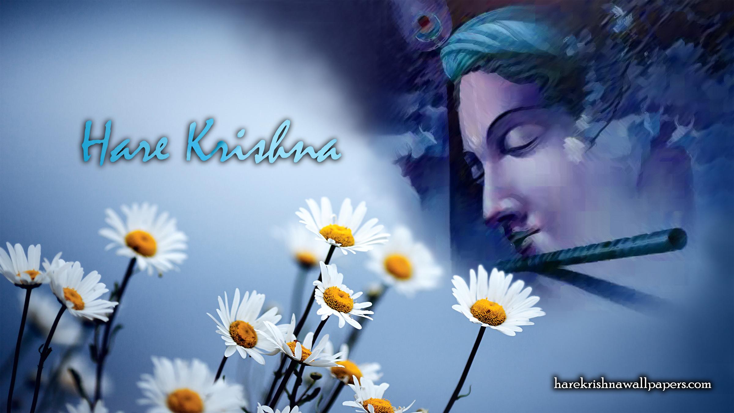 Hare Krishna Wallpaper (002) Size 2400x1350 Download