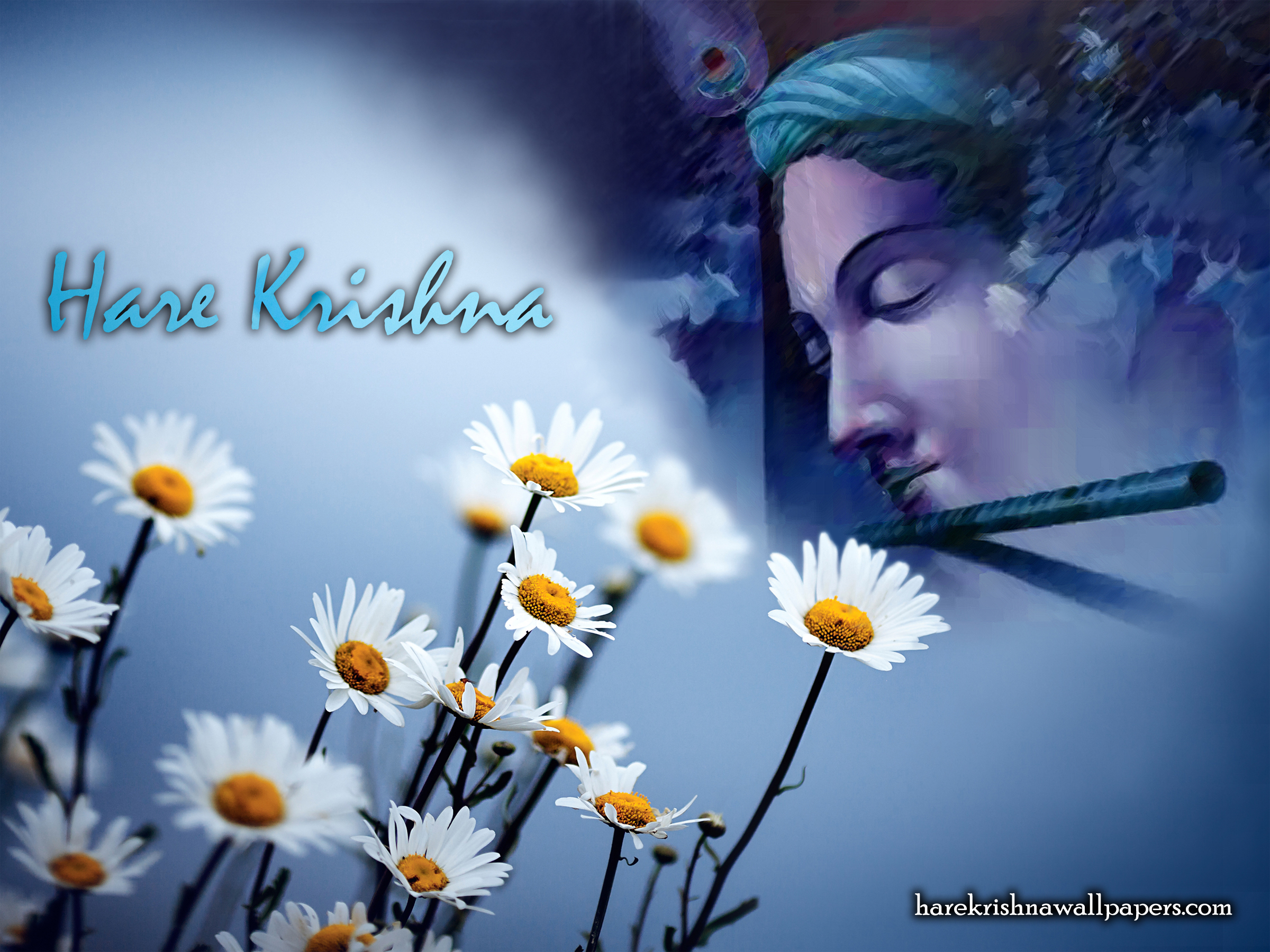 Hare Krishna Wallpaper (002) Size 2400x1800 Download
