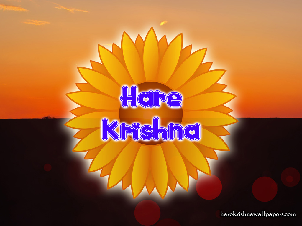 Hare Krishna Wallpaper (009) Size 1024x768 Download