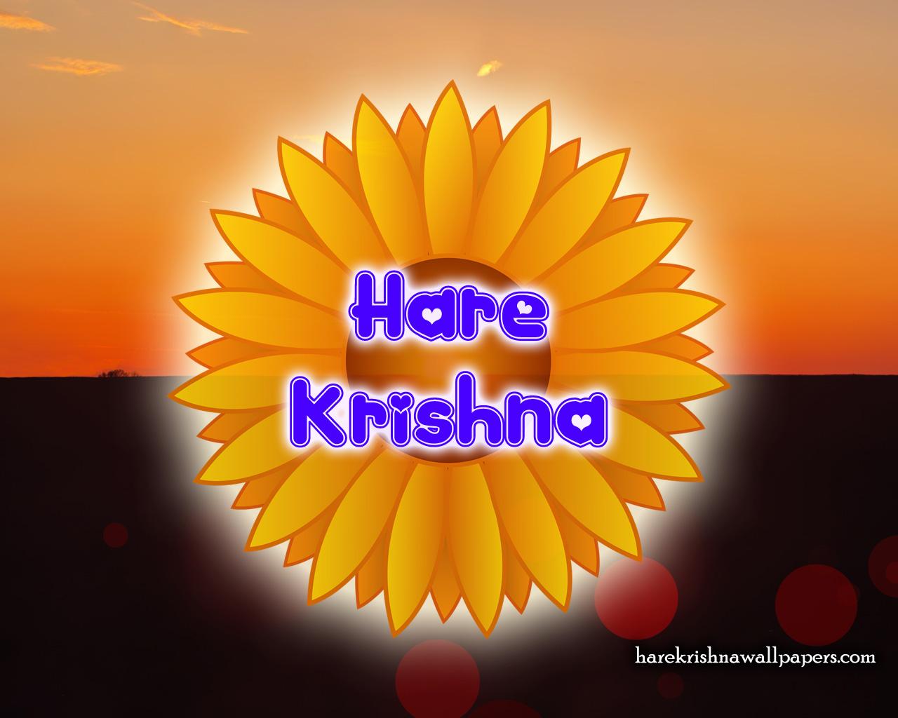 Hare Krishna Wallpaper (009) Size 1280x1024 Download