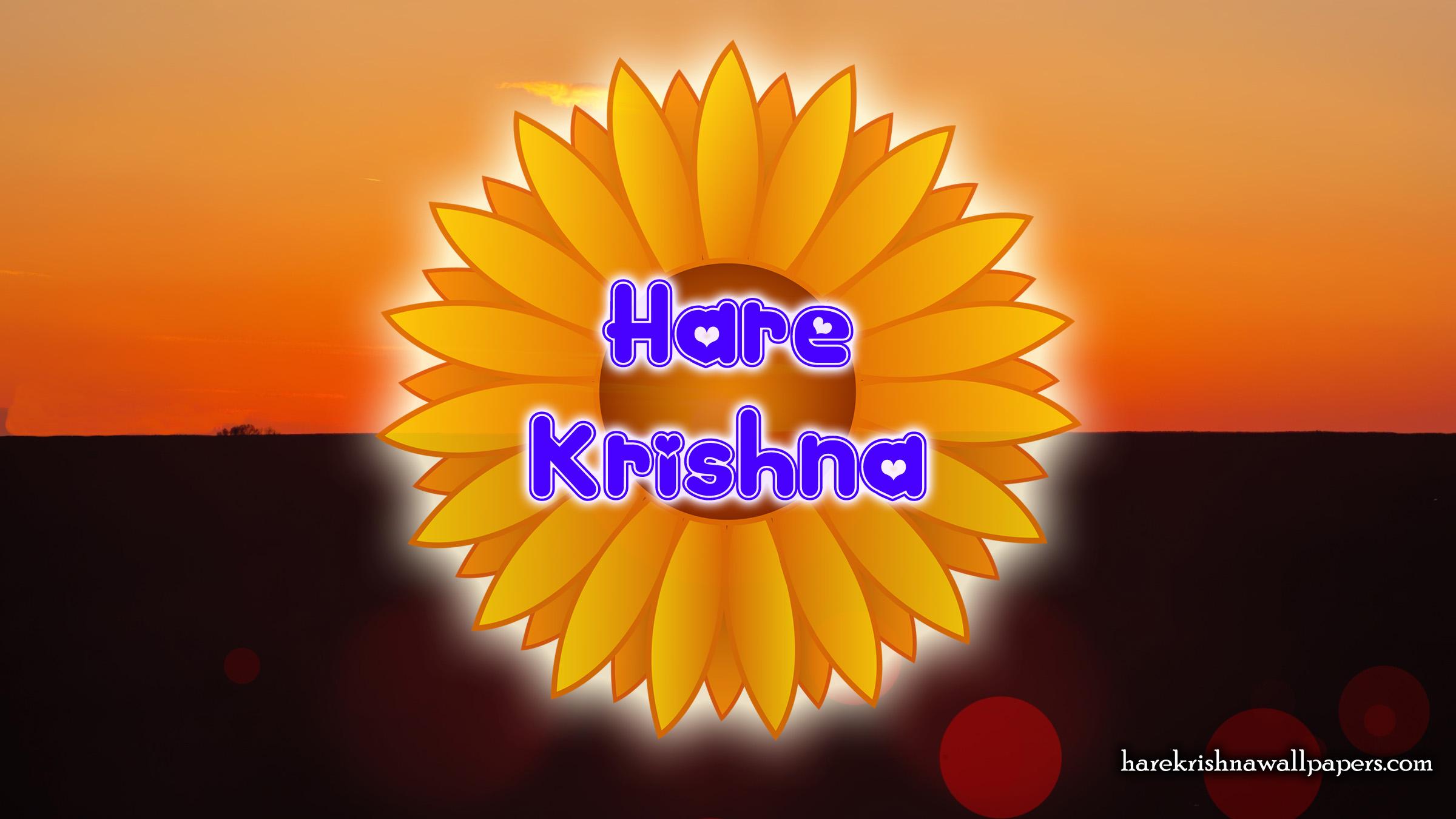 Hare Krishna Wallpaper (009) Size 2400x1350 Download