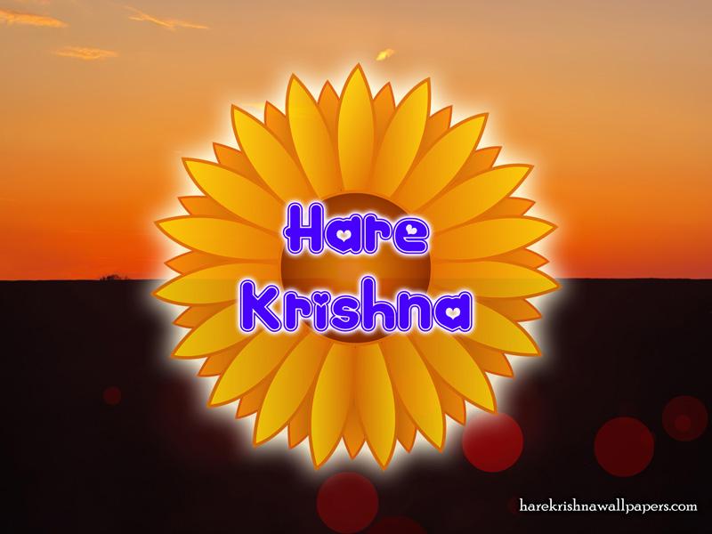 Hare Krishna Wallpaper (009) Size 800x600 Download