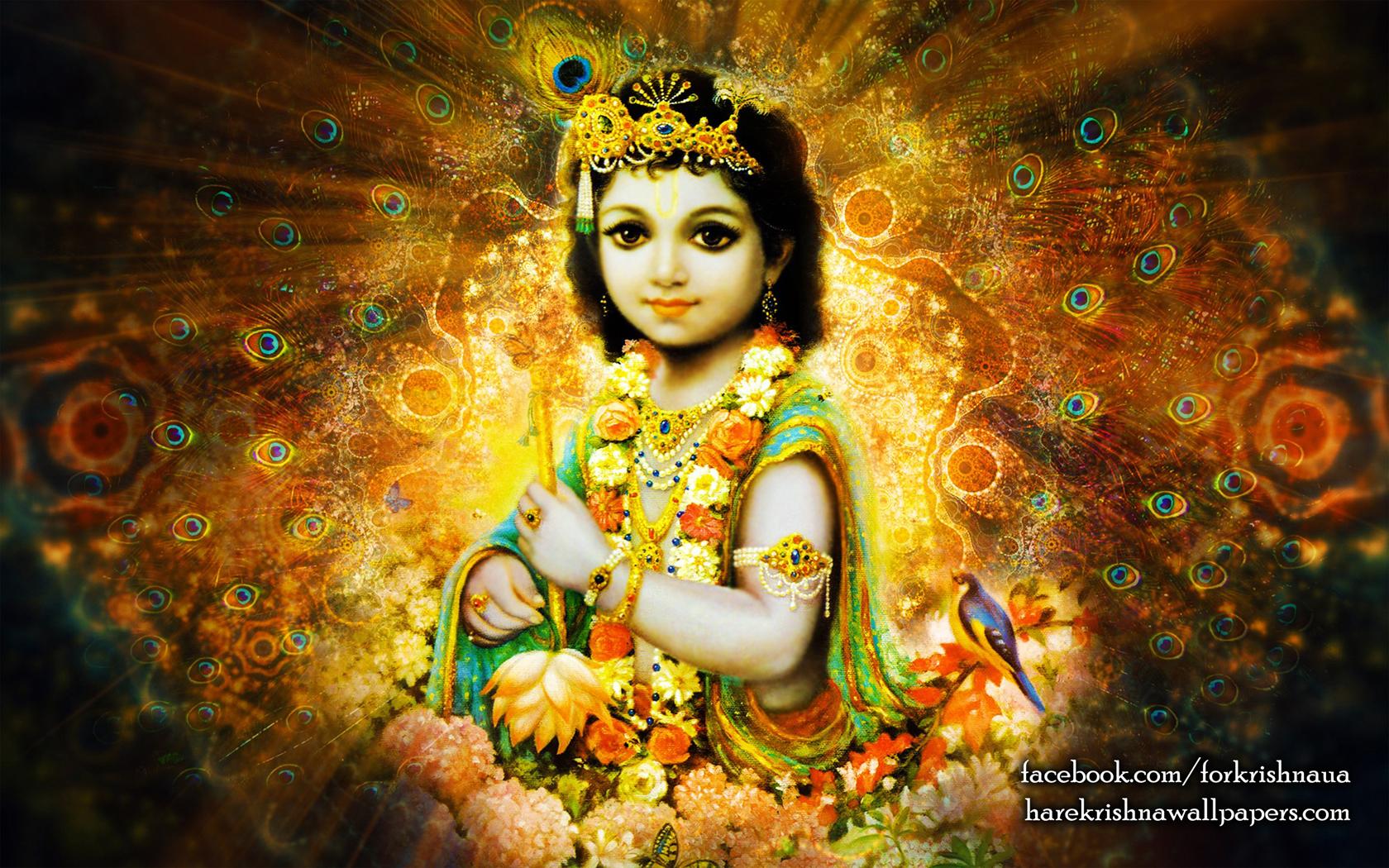 Krishna Wallpaper (004) Size 1680x1050 Download