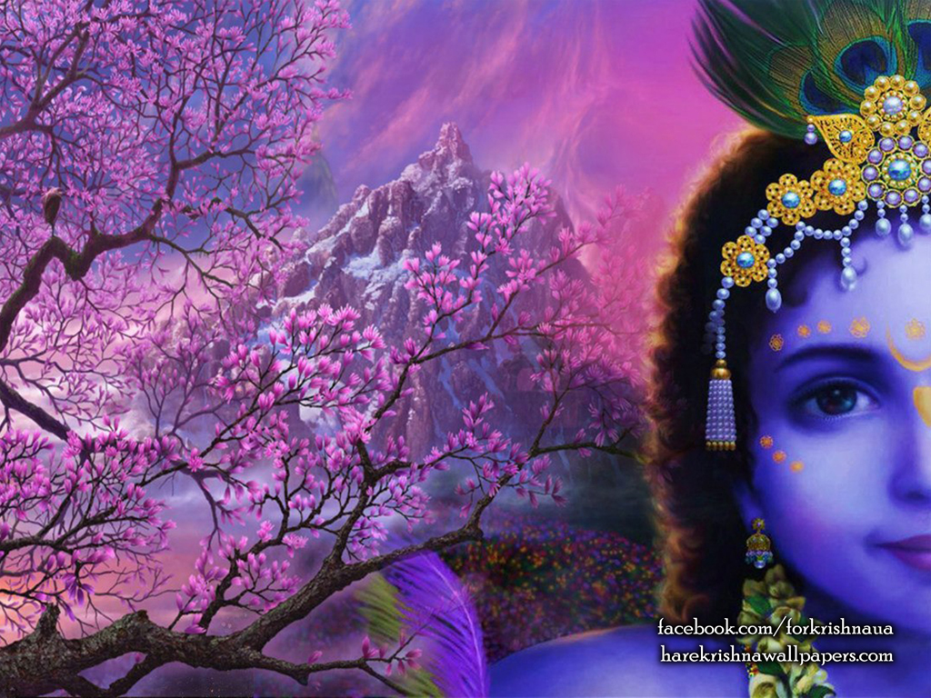 Krishna Wallpaper (005) Size 1024x768 Download