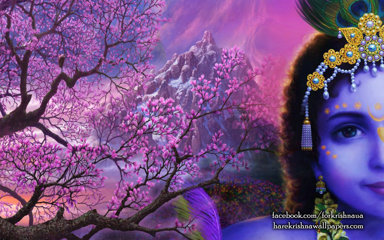 Krishna Wallpaper (005) Size 1280x800 Download