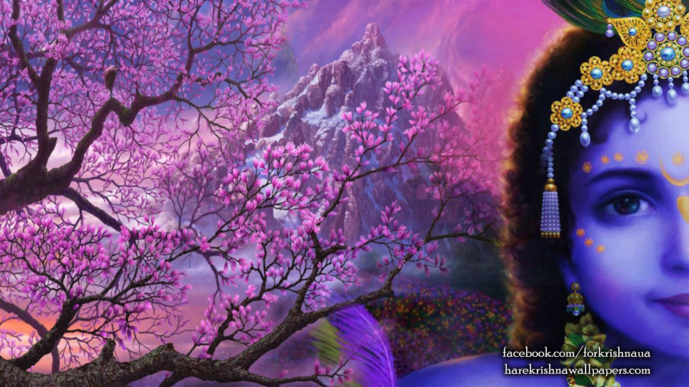 Krishna Wallpaper (005) Size 2400x1350 Download