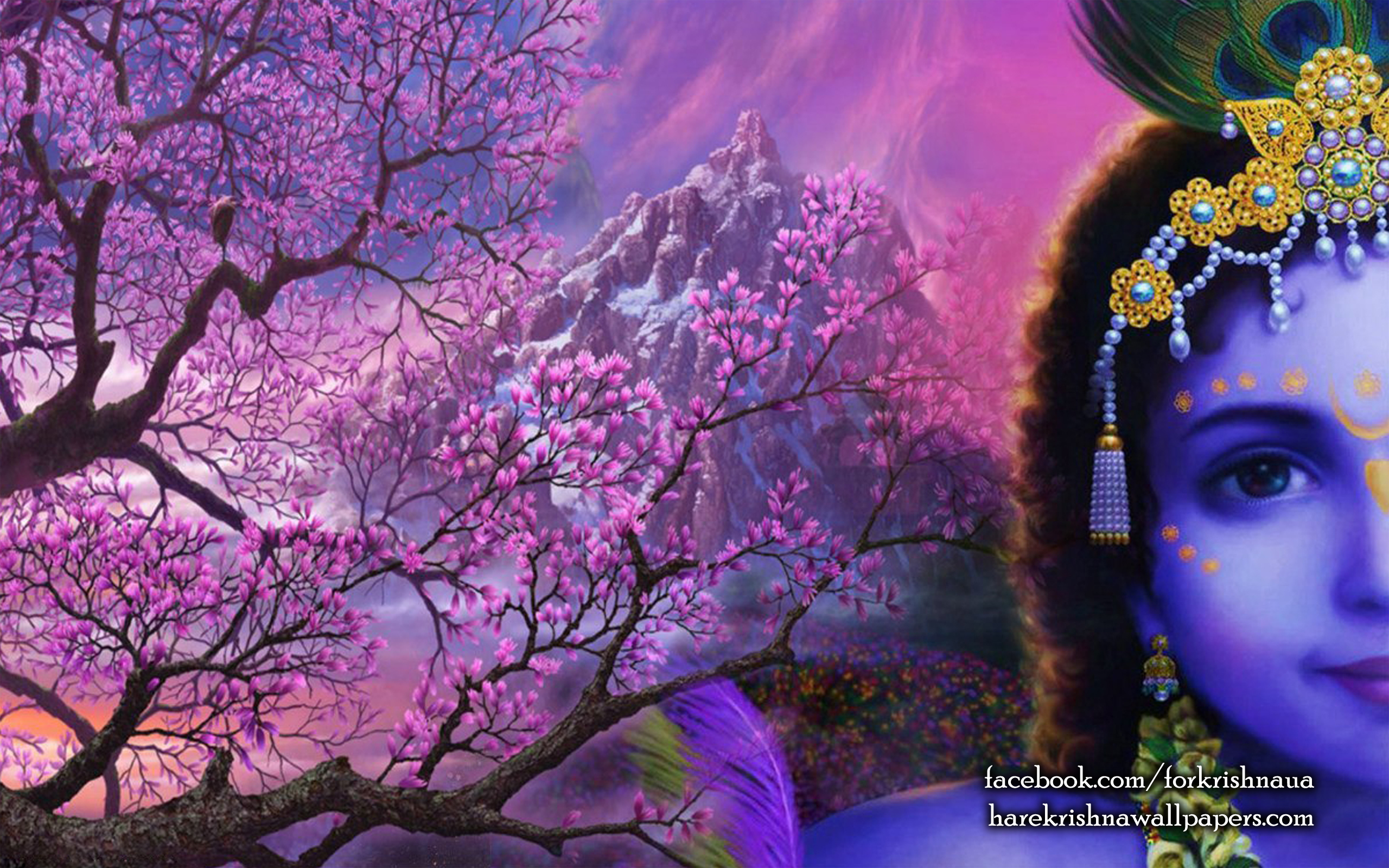 Krishna Wallpaper (005) Size 2560x1600 Download