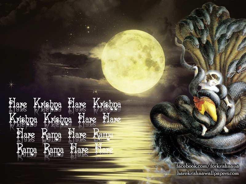 Krishna Wallpaper, Lord Krishna with Kaliya, Free Download Wallpapers