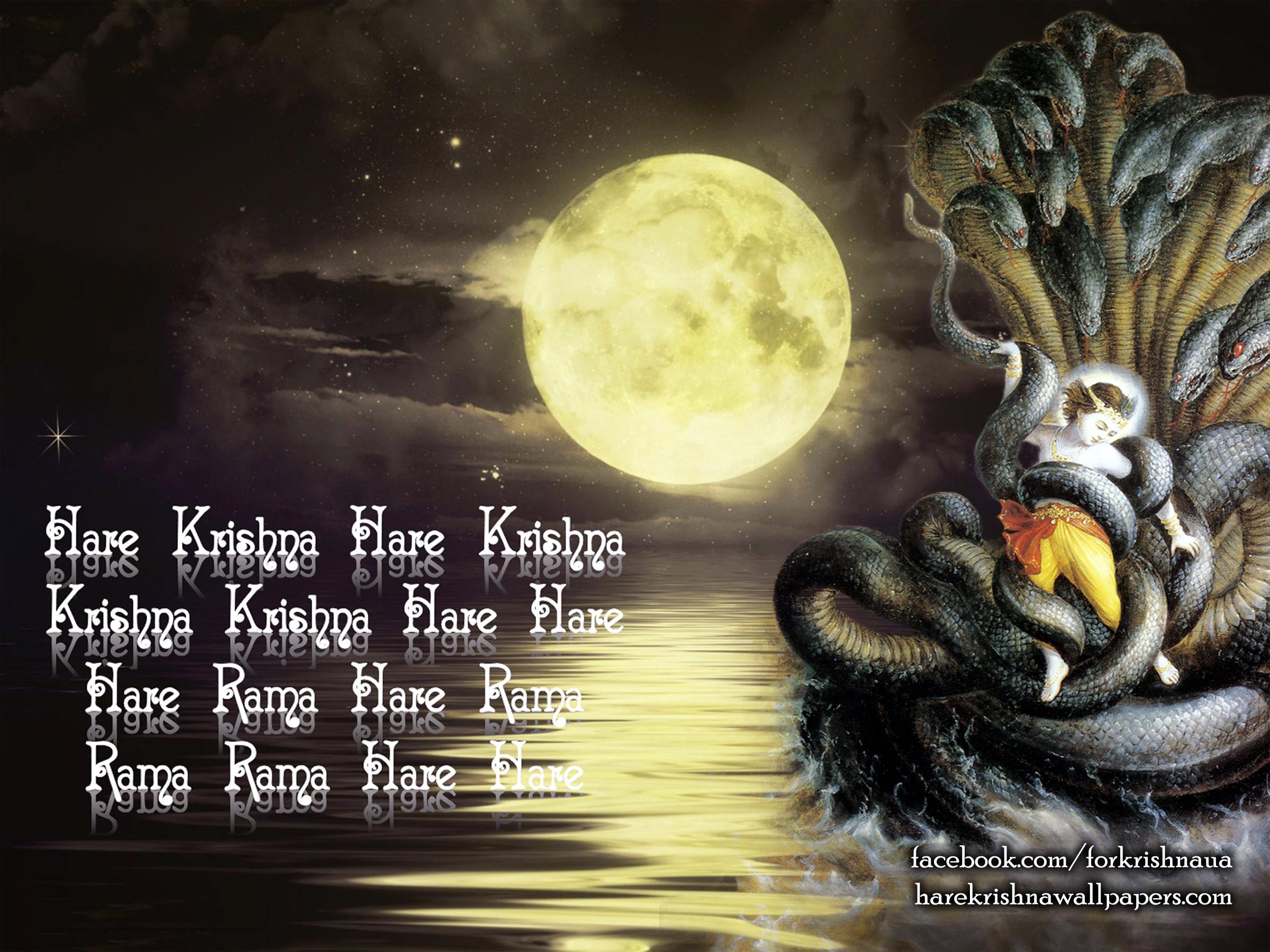 Krishna Wallpaper (008) Size 2400x1800 Download