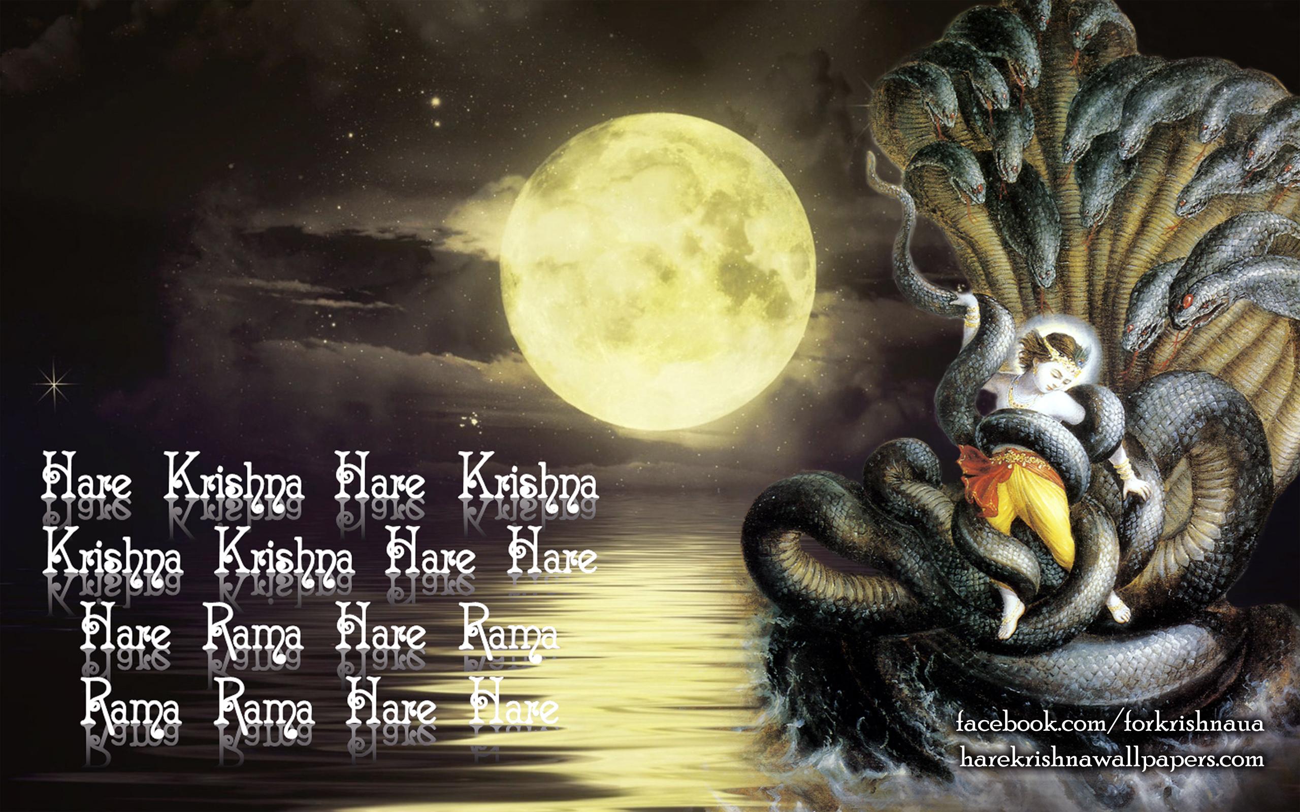 Krishna Wallpaper (008) Size 2560x1600 Download
