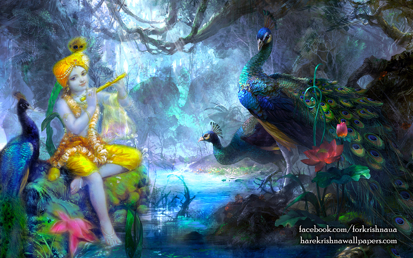 Krishna Wallpaper (009) Size 1680x1050 Download