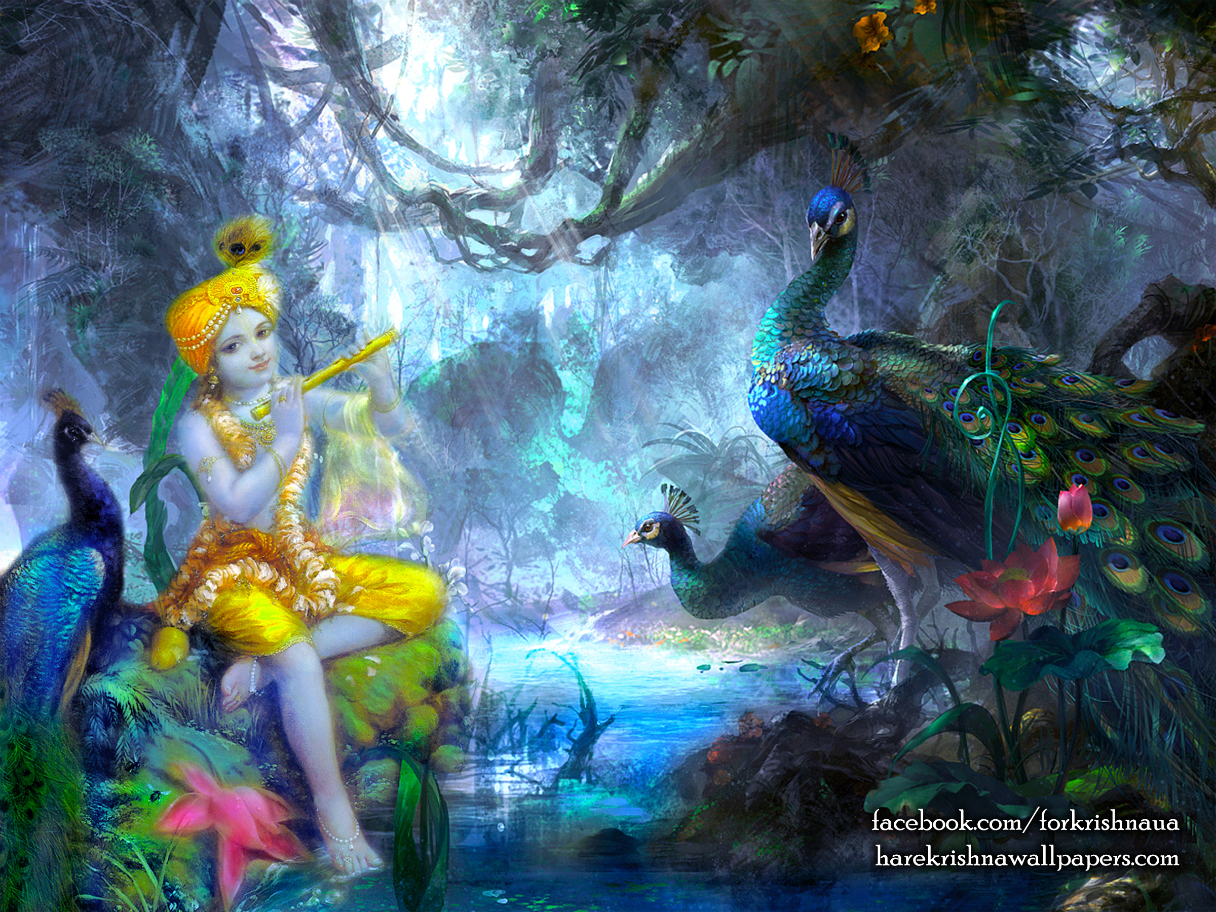 Krishna Wallpaper (009) Size 2400x1800 Download
