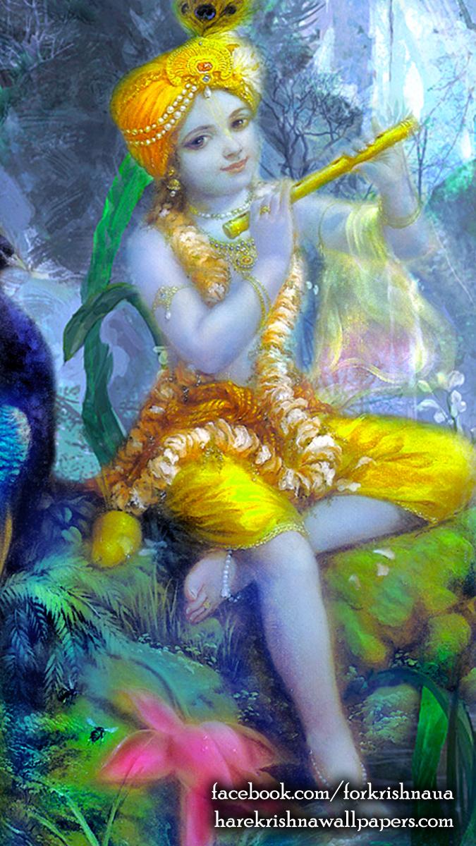 Krishna Wallpaper (009) Size 675x1200 Download